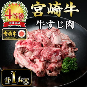 【ふるさと納税】<宮崎牛> 牛すじ肉 計1kg (500g×2袋) 美味しい牛肉をご家庭で【KU046】