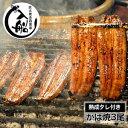 【ふるさと納税】炭火焼一筋126年「うなぎの入船」かば焼3尾(熟成たれ付)