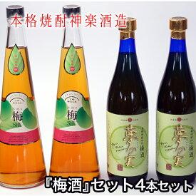 【ふるさと納税】神楽酒造『梅酒』セット(4本セット)