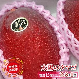 【ふるさと納税】宮崎県 西都産完熟マンゴー「太陽のタマゴ」約1kg(JA西都)【先行予約】