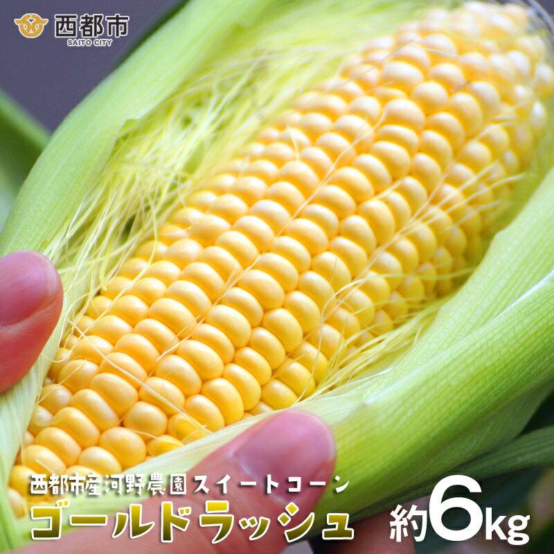 【ふるさと納税】河野農園 スイートコーン ゴールドラッシュ6kg