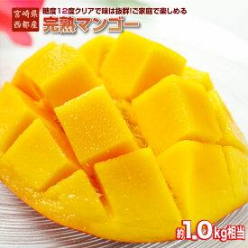 【ふるさと納税】『訳あり』完熟マンゴー 約1kg(JA西都)宮崎県 西都市産