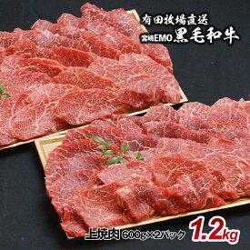 【ふるさと納税】宮崎EMO黒毛和牛 上焼肉(1.2kg)