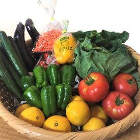 【ふるさと納税】【先行予約】野菜とくだもの満喫「定期便」(6ヶ月お届け)飲食店応援セット