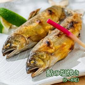 【ふるさと納税】鮎の塩焼きギフト(6〜8尾入り)