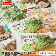 【ふるさと納税】冷凍野菜詰め合わせセット