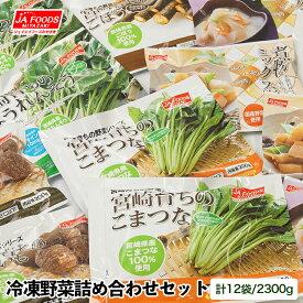 【ふるさと納税】国産「冷凍野菜」詰合せ6種類(合計12袋)『10日以内で発送します』とっても便利!/国産野菜/送料無料
