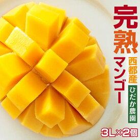 【ふるさと納税】ひだか農園 完熟マンゴー 3L×2個入(宮崎県西都市産)【先行予約・数量限定】