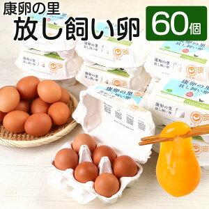 【ふるさと納税】康卵の里「放し飼い卵」 卵60個 宮崎県えびの市産 九州産 国産 玉子 生卵 鶏卵 たまご 破損保証5個含む 送料無料