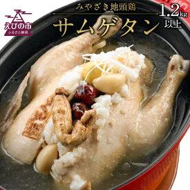 【ふるさと納税】みやざき地頭鶏サムゲタン 1.2kg以上 参鶏湯 鶏肉 韓国料理 にんにく なつめ もち米 栗 高麗人参 国産 九州産 送料無料