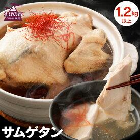 【ふるさと納税】みやざき地頭鶏サムゲタン 1.2kg以上 参鶏湯 鶏肉 韓国料理 にんにく なつめ もち米 栗 高麗人参 冷凍 国産 九州産 送料無料