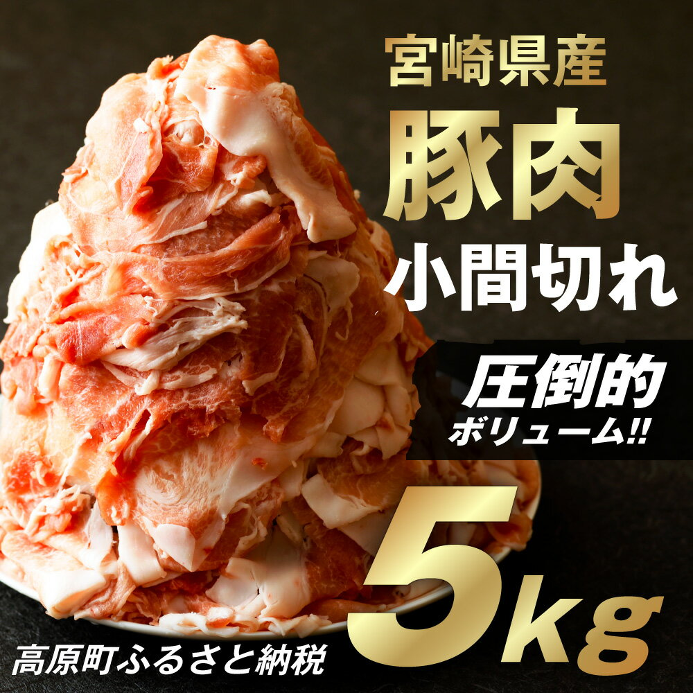 【ふるさと納税】宮崎県産 豚こま切れ5kg 送料無料 メガ盛り 豚こま 国産 豚小間切れ肉