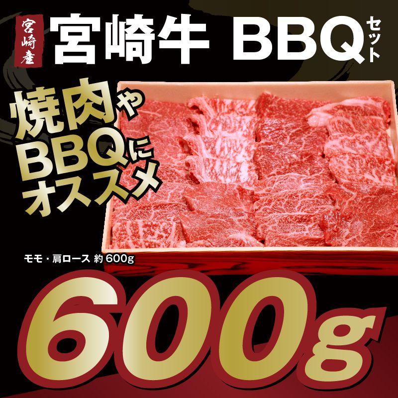 【ふるさと納税】宮崎県産 肉厚 宮崎牛BBQセット約600g