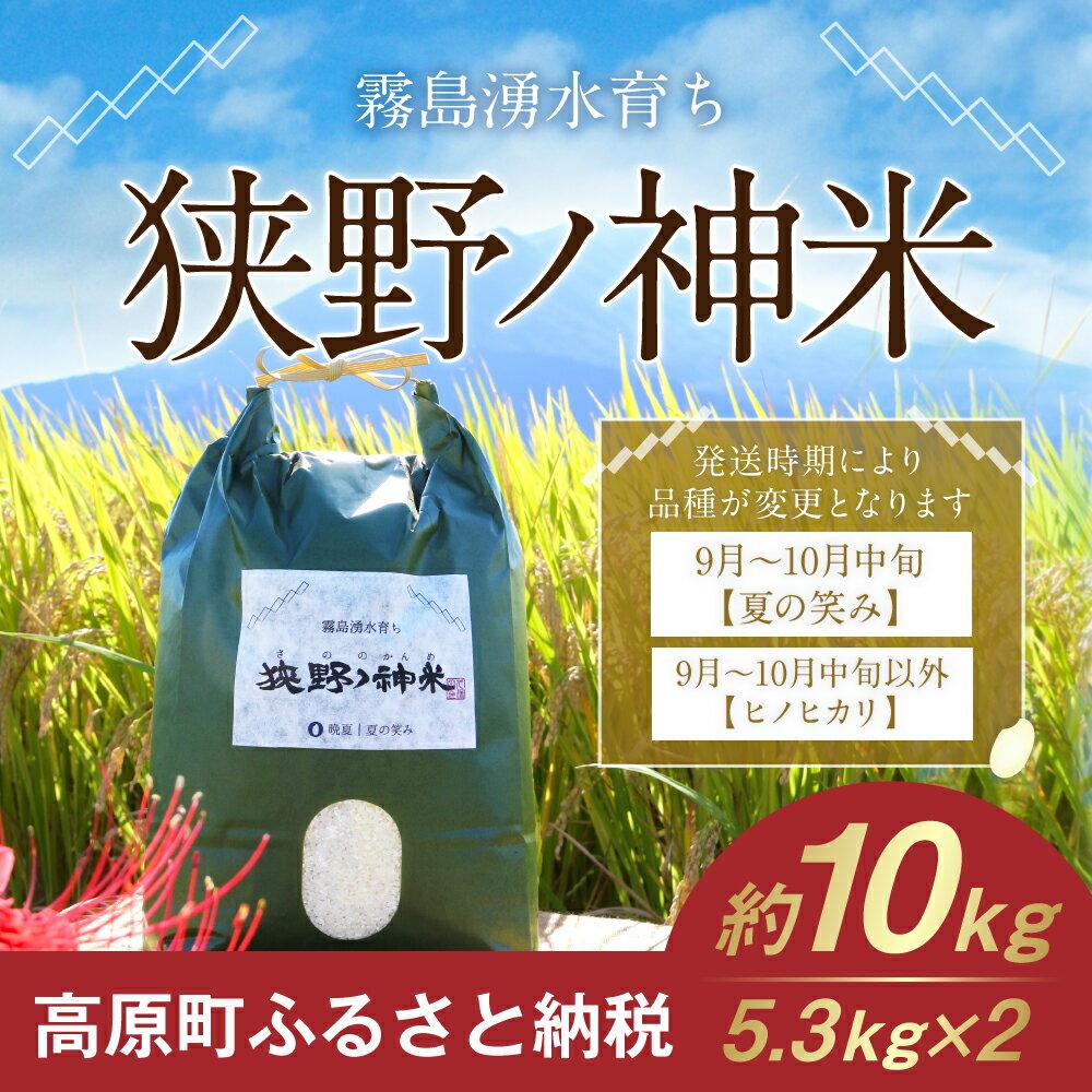 【ふるさと納税】宮崎県産 29年度 ひのひかり 夏の笑み 5.3kg×2 狭野ノ神米 送料無料