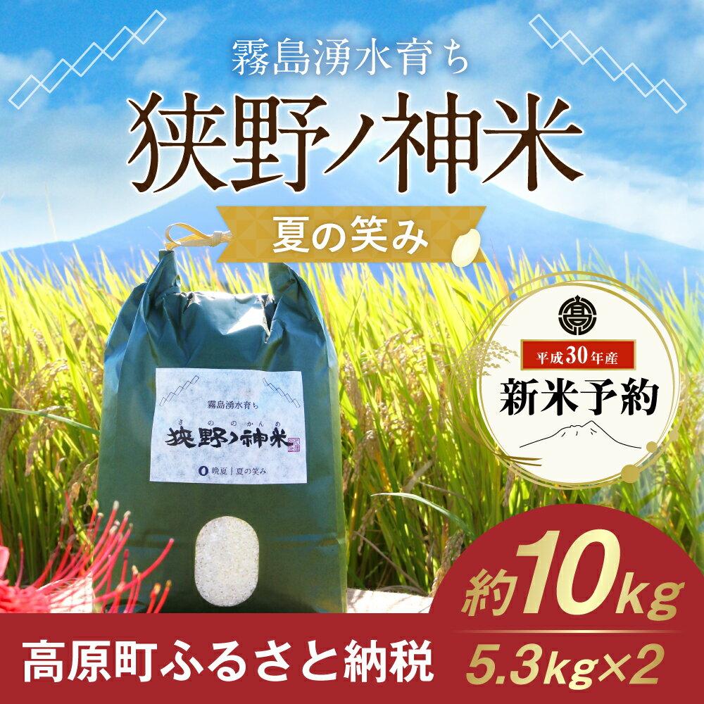 【ふるさと納税】宮崎県産 30年度産 新米 夏の笑み 5.3kg×2 狭野ノ神米 送料無料