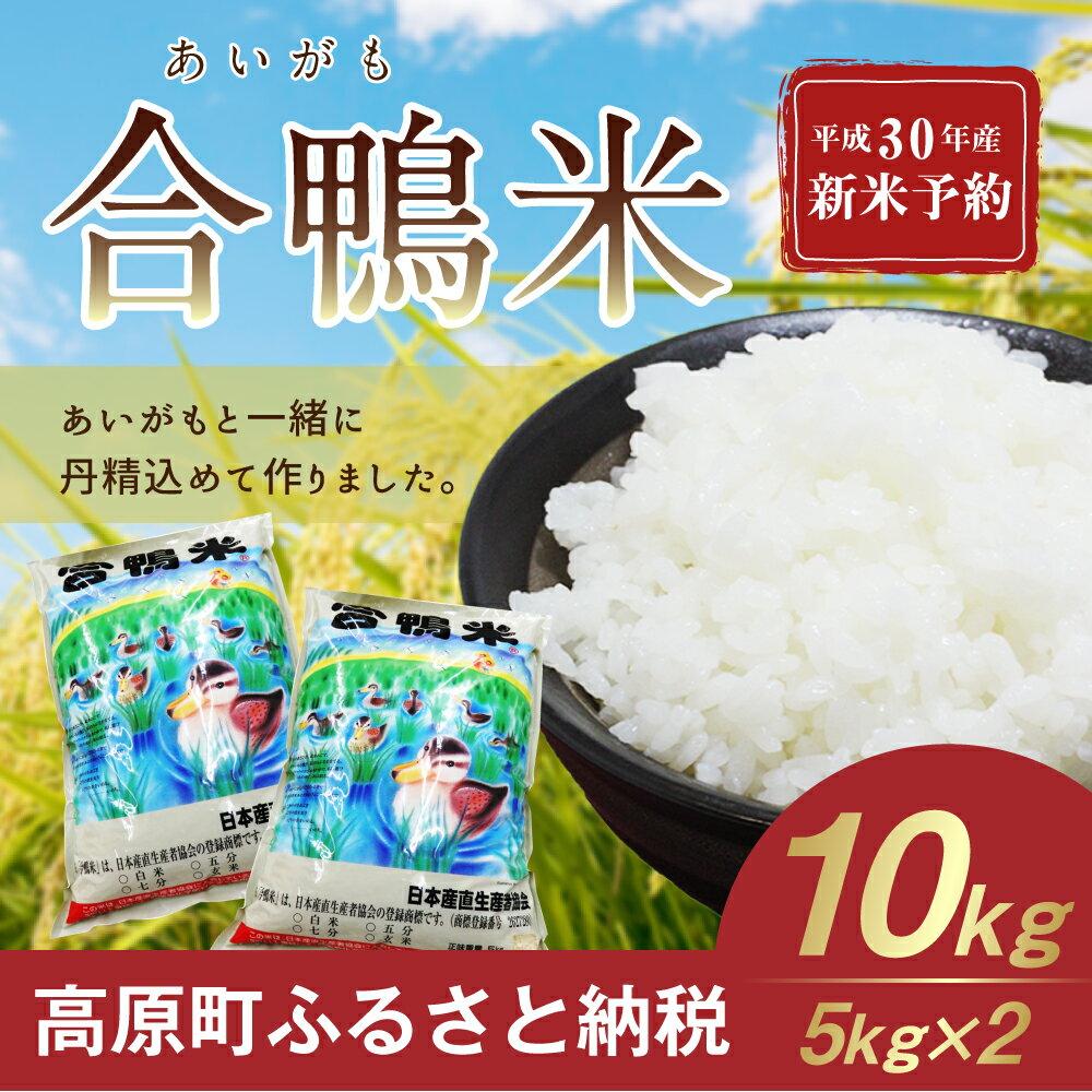 【ふるさと納税】宮崎県産 平成30年産 10月以降発送 新米 合鴨米 10kg 送料無料