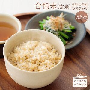 【ふるさと納税】 宮崎県産特選 令和2年産 新米 合鴨米(玄米) 5.5kg 地球にやさしく、人にやさしいお米 ※送料無料