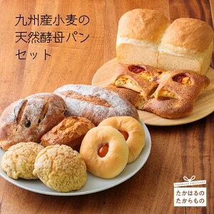 【ふるさと納税】宮崎県産特選 九州産小麦の天然酵母パンセット(9個 [7種類]) -霧島高原のパン- 天然酵母100%使用 小麦本来の美味しさ、噛むほどに優しい甘さのパン ※送料無料