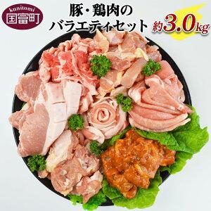 【ふるさと納税】<豚・鶏肉のバラエティセット(重量約3.0kg)>※入金確認後、翌月末迄に順次出荷します。ポーク チキン 宮崎県産 国富産 豚肉 鶏肉 詰め合わせ 色々 とんかつ 生姜焼き