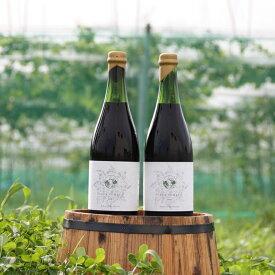 【ふるさと納税】完全無農薬赤ワイン 2018/2019 Aya Rouge (綾ルージュ)飲み比べセット(綾ルージュ)
