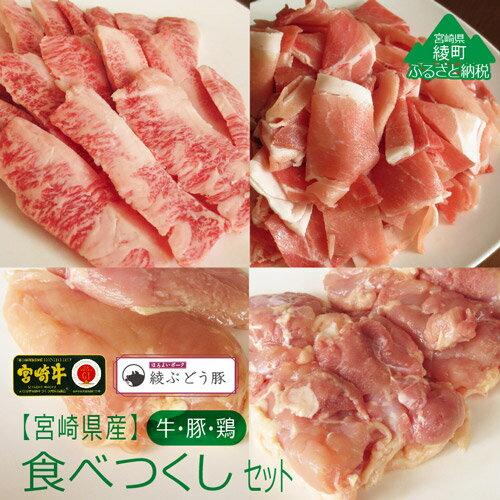 【ふるさと納税】宮崎県産牛・鶏・豚肉食べつくしセット