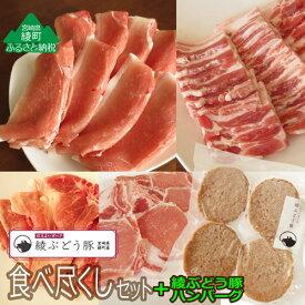 【ふるさと納税】綾ぶどう豚食べ尽くしセット&ぶどう豚ハンバーグ