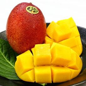 【ふるさと納税】マンゴー「太陽のたまご」(2玉)