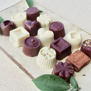 【ふるさと納税】白砂糖不使用オーガニックチョコ100%使用ミニチョコセット<15個入り>