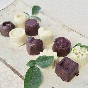 【ふるさと納税】白砂糖不使用オーガニックチョコ100%使用ミニチョコセット<10個入り>