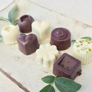 【ふるさと納税】白砂糖不使用オーガニックチョコ100%使用ミニチョコセット<8個入り>