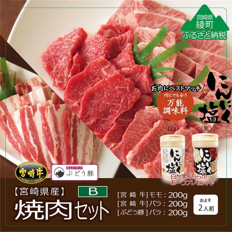 【ふるさと納税】R-8ぶどう豚・宮崎牛 焼肉セット+にんにく塩※ご寄附いただいてから1〜3ヶ月以内に発送します!