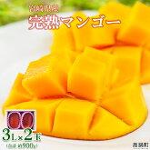 宮崎県産完熟マンゴー3L×2玉(合計約900g)