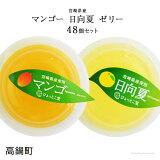 宮崎県産マンゴーゼリー・日向夏ゼリーたっぷり合計48個セット