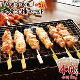 宮崎県産若鳥串焼き3種40本セット計2kg
