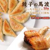 もっちり餃子40個と手羽餃子10本セット