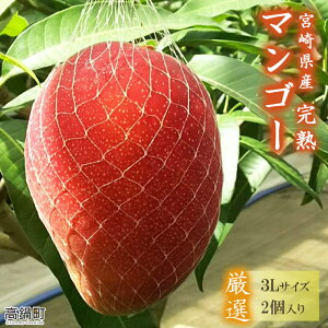【ふるさと納税】<宮崎県産完熟マンゴー(3L×2個)>※入金確認後、翌月末迄に順次出荷します。 果物 フルーツ 特産品 宮崎県 高鍋町【冷蔵】