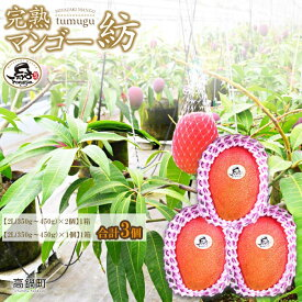 【ふるさと納税】予約<完熟マンゴー「紡」2L×3個>※2020年7月下旬〜9月中旬頃迄に順次出荷します。 特産品 宮崎県 高鍋町 果物 フルーツ【冷蔵】