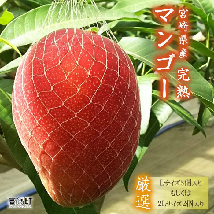 【ふるさと納税】<宮崎県産完熟マンゴー>※2019年4月下旬〜7月末迄に順次出荷します。 果物 フルーツ 特産品 宮崎県 高鍋町【冷蔵】