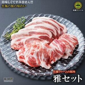 【ふるさと納税】<高鍋町産 佐藤ファームの豚肉 雅セット合計2.1kg>※入金確認後、翌月末迄に順次出荷します。 2100g とんかつ ロース しゃぶしゃぶ バラ 焼肉 野上食品 特産品 宮崎県 高