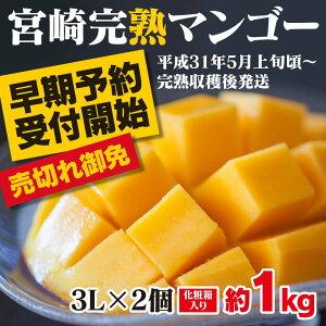 【ふるさと納税】みやざき完熟マンゴー 大玉3Lサイズ ...