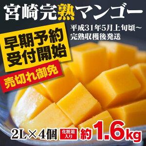 【ふるさと納税】みやざき完熟マンゴー 中玉2Lサイズ ...
