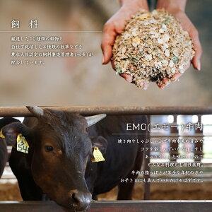 【ふるさと納税】エモー牛<極上仕上げハンバーグ20%増量1.8kg(150g×12個)>牛肉お肉特産品宮崎県新富町