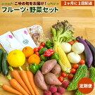 【限定100セット!】量と味に自信あり!フルーツ・野菜10品以上!!+特産品6回盛り沢山セット※定期便
