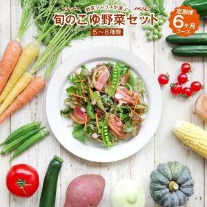 【ふるさと納税】野菜ソムリエが選ぶ 旬のこゆ野菜セット 6ヵ月コース 定期便 5〜8種類 送料無料 盛り合わせ 国産