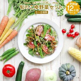 【ふるさと納税】野菜ソムリエが選ぶ 旬のこゆ野菜セット 12ヵ月コース 定期便 5〜8種類 送料無料 盛り合わせ 国産