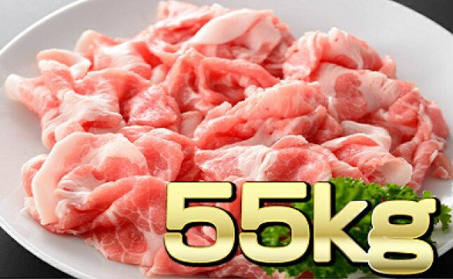 【ふるさと納税】定期便 圧倒的感謝!祭「豚肉切り落とし」合計 55,000g(55kg) 豚 切落し 九州産 宮崎県産 数量限定 送料無料