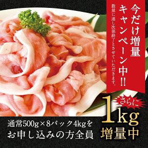 【ふるさと納税】今だけ1キロ増量!宮崎県産豚肉切り落し5kg5000g(500g×10パック)冷凍切落し切り落とし豚肉特産品宮崎県新富町送料無料