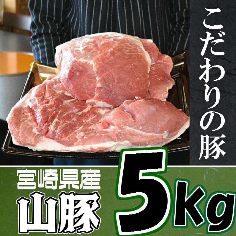【ふるさと納税】<きじょん山豚モモブロック5kg>※ご寄附から2ヵ月以内に出荷 もも 豚肉 鶏肉 特産品 宮崎県 新富町 【冷凍】