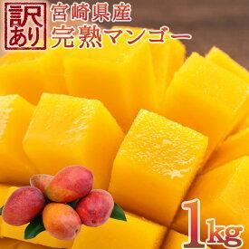 【ふるさと納税】<予約受付>宮崎県産 訳あり完熟マンゴー 1kg 数量限定 フルーツ 果物  ※2020年6月〜7月の期間内に順次出荷