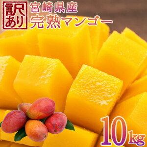 【ふるさと納税】<予約受付>宮崎県産 訳あり完熟マンゴー 10kg フルーツ 果物 ※2020年6月〜7月の期間内に順次出荷